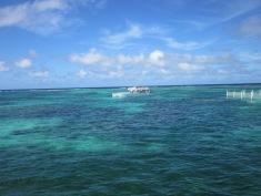 Punta Cana 4